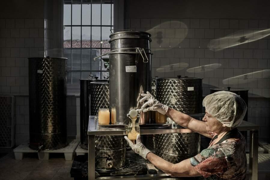 Le miel de Belluno : l'or pur des montagnes vénitiennes