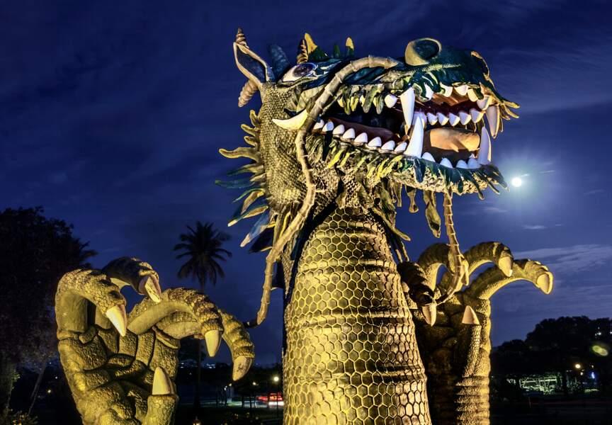 Dragon dans la nuit