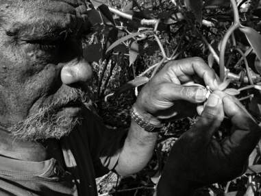 Nouvelle-Calédonie : l'île de Lifou, paradis kanak