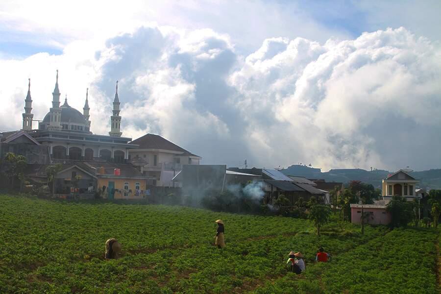 Indonésie - Le plateau de Dieng sur l'île de Java