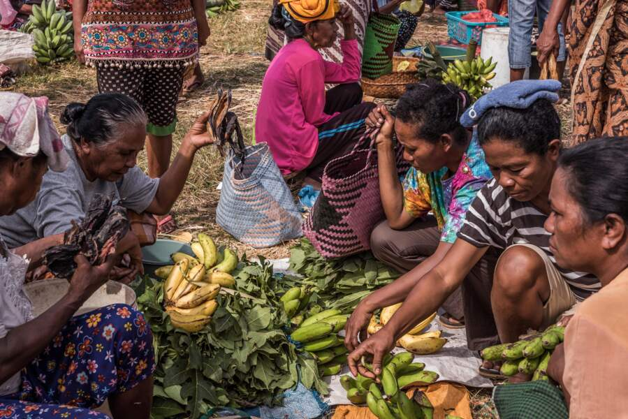 Troc : cachalot contre bananes