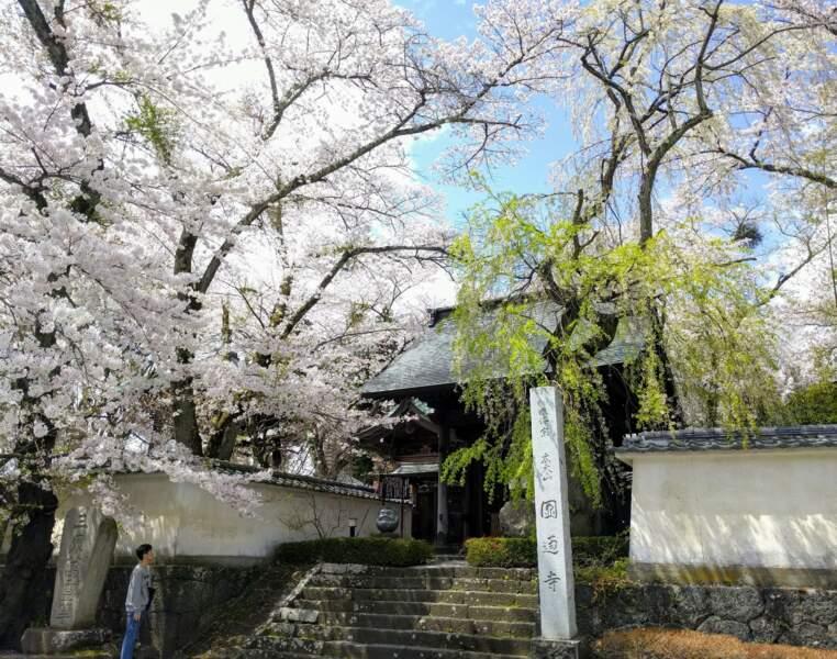 Au détour d'une rue, Japon