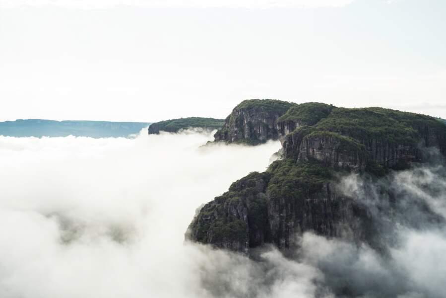 """Le parc national de Chiribiquete, """"La maloca des jaguars"""", en Colombie"""