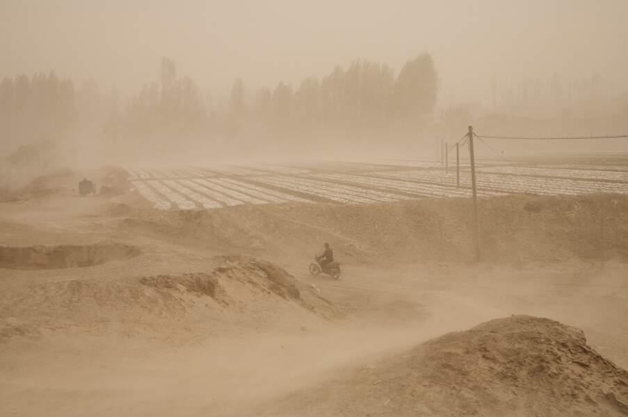 """Tempête à Wuwei, série sur le """"dust bowl"""" chinois, 2006-07"""