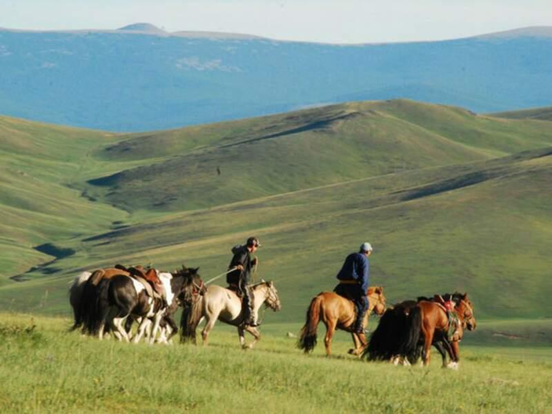 Diaporama n°6 - Mongolie, dans l'immensité des steppes
