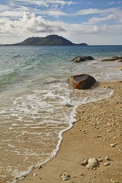 A Fitzroy, lézarder sur une des plus belles plages d'Australie