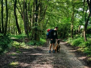 3300 kilomètres à pied sur les routes de France