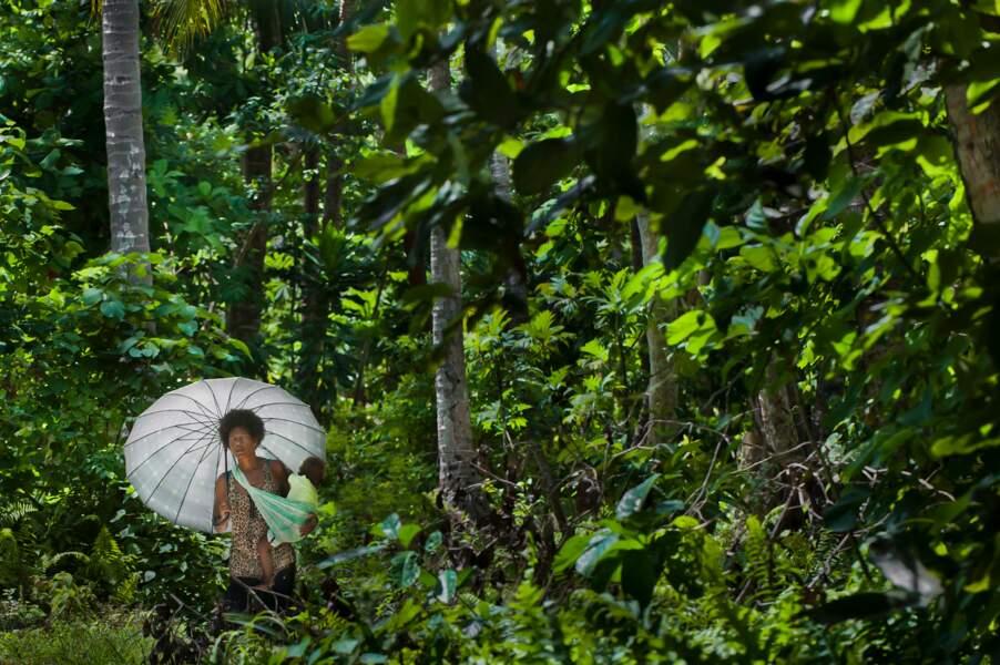 Île de Owaraha, archipel des îles Salomon