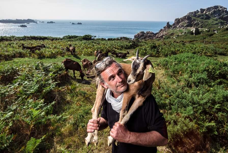 Tandis que les chèvres jardinières sont à l'œuvre, on peut encore écouter le doux bruit des vagues