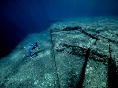 Japon, Mexique, île Maurice… L'incroyable odyssée sous-marine de l'apnéiste Guillaume Néry