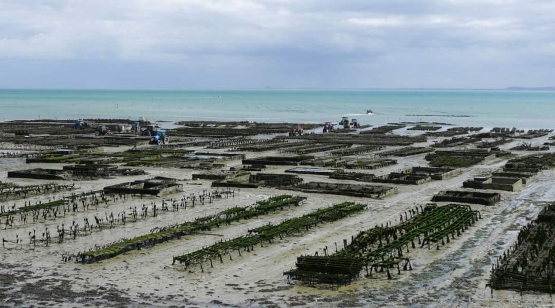 France - À la découverte de la Côté d'Émeraude