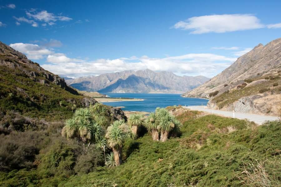 La Nouvelle-Zélande : voyage en terre mystérieuse