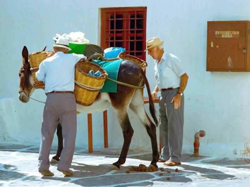 Vente à domicile sur l'île de Mykonos