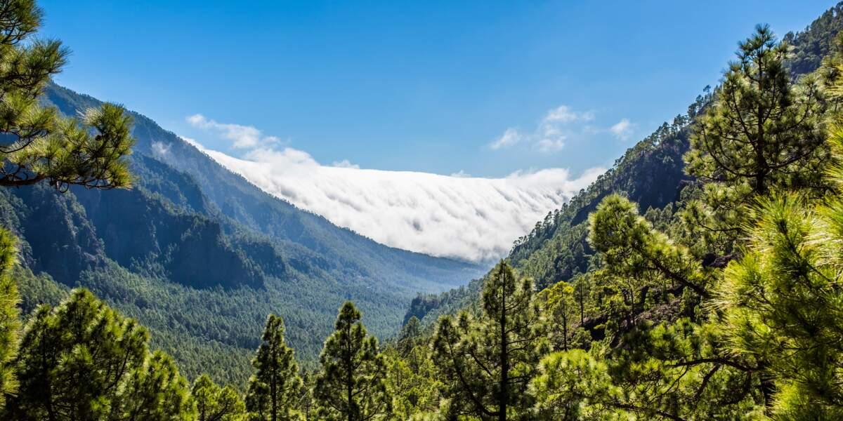 Le parc national de la Caldera de Taburiente