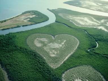 Saint-Valentin : 8 cœurs nichés dans la nature