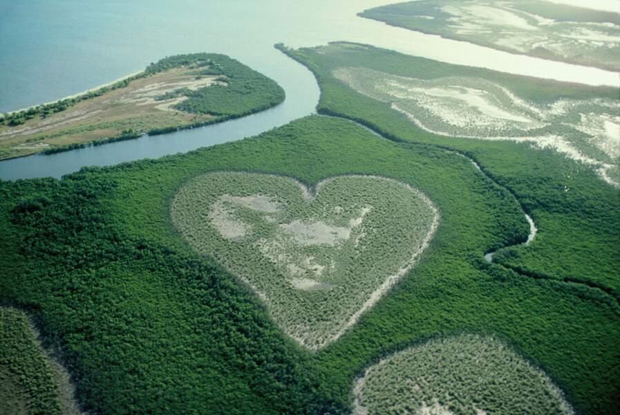 Cœur de Voh dans la mangrove sur la Grande Terre, Nouvelle-Calédonie