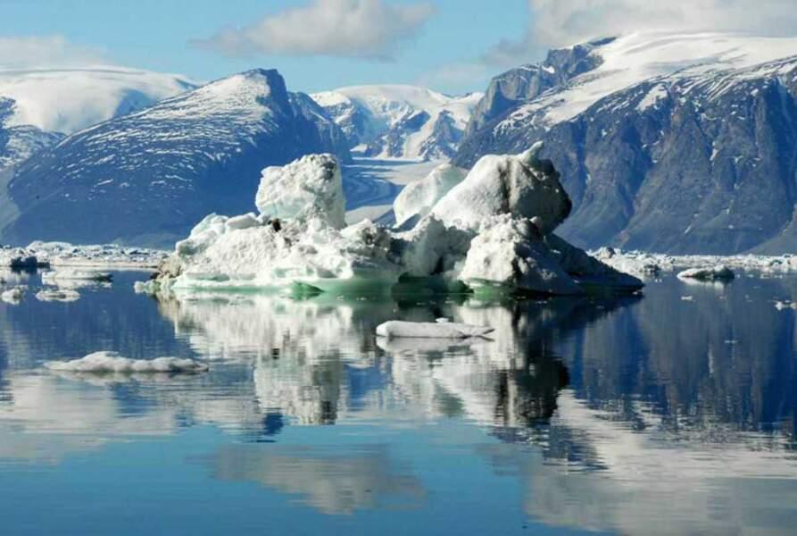 Des icebergs, encore des icebergs
