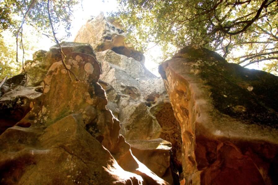 Californie - Castle Rock State Park