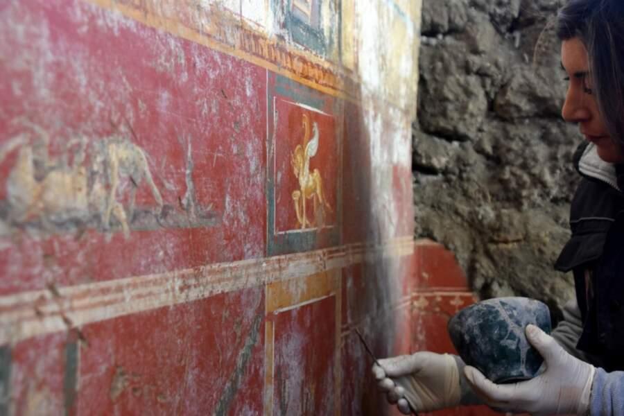De splendides décors révélés par de nouvelles fouilles