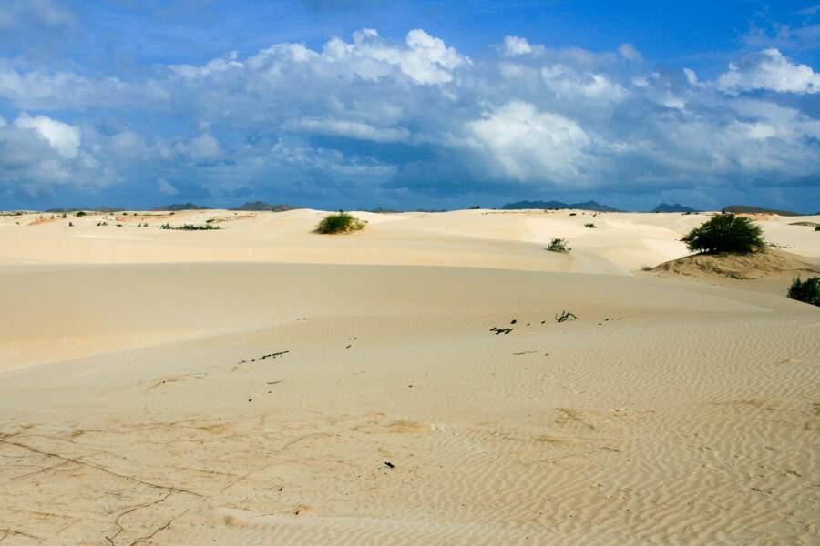 Le désert de Boa Vista