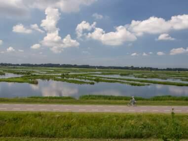 Pays-Bas : face à la montée des eaux, les Hollandais se préparent