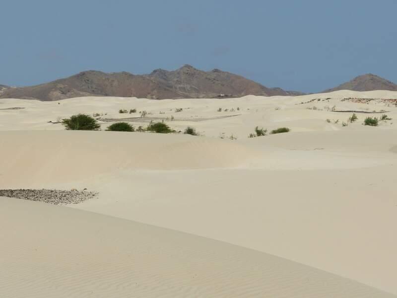 Le désert du Viana