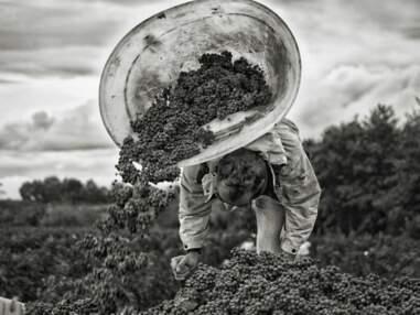 Les plus belles photos de la Communauté - du 17 au 23 novembre 2012