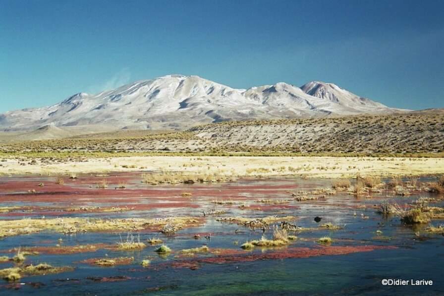 Bolivie - Un festival de paysages grandioses