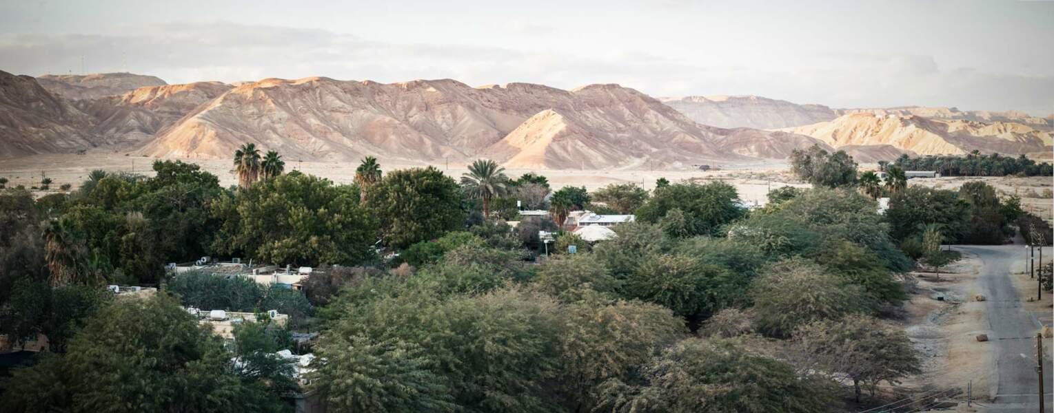 Le désert du Néguev, terre d'accueil