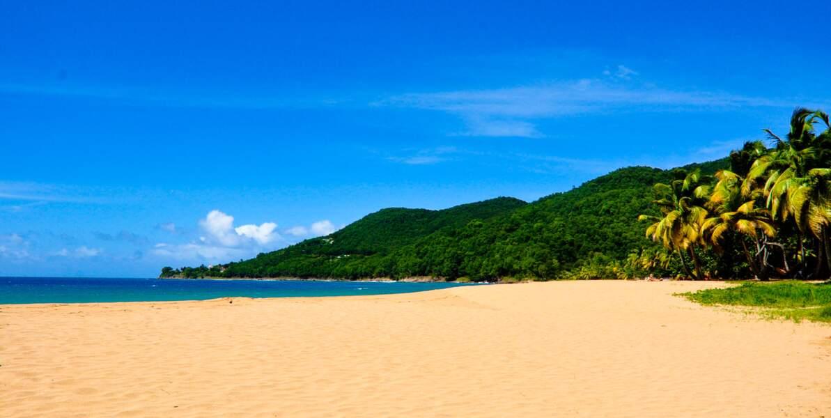 Sable fin et cocotiers, des plages sublimes vous attendent