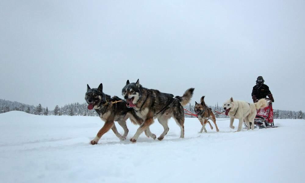 Finlande, par Eric Roustand / Communauté GEO