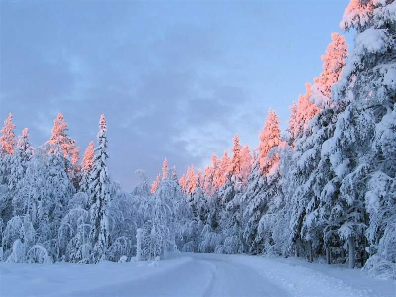 Payage hivernal en Suède par Amy Arduinna / Communauté GEO