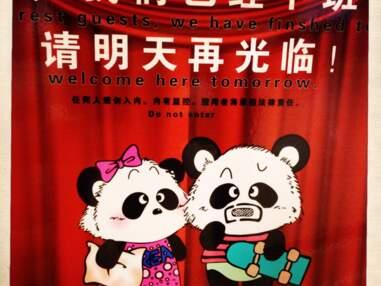 Panda mania en Chine : le making-of de notre reportage