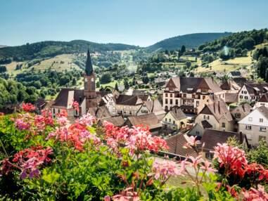 La France nature : L'Alsace et la Lorraine