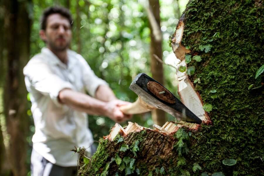 Comment Ben et James ont-ils construit leur pirogue ? 1/L'abattage de l'arbre