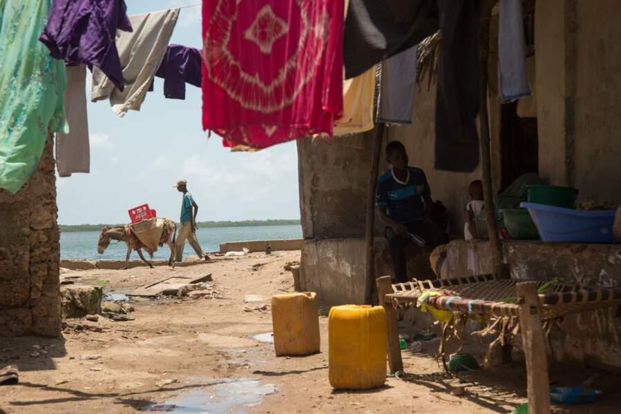 Vieille ville de Lamu