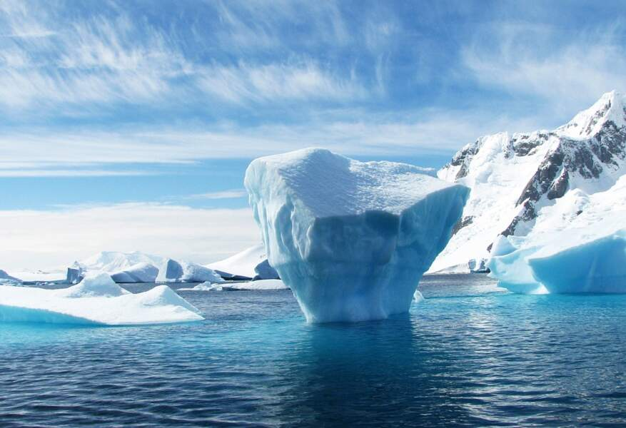 Antarctique : protéger le milieu naturel