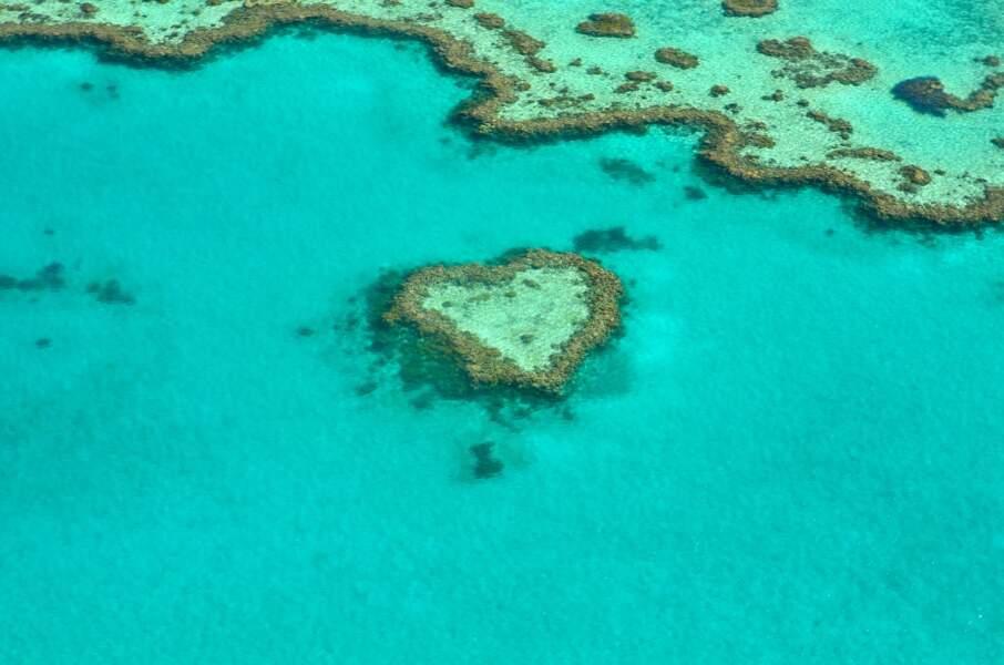 Grande barrière de corail, Australie