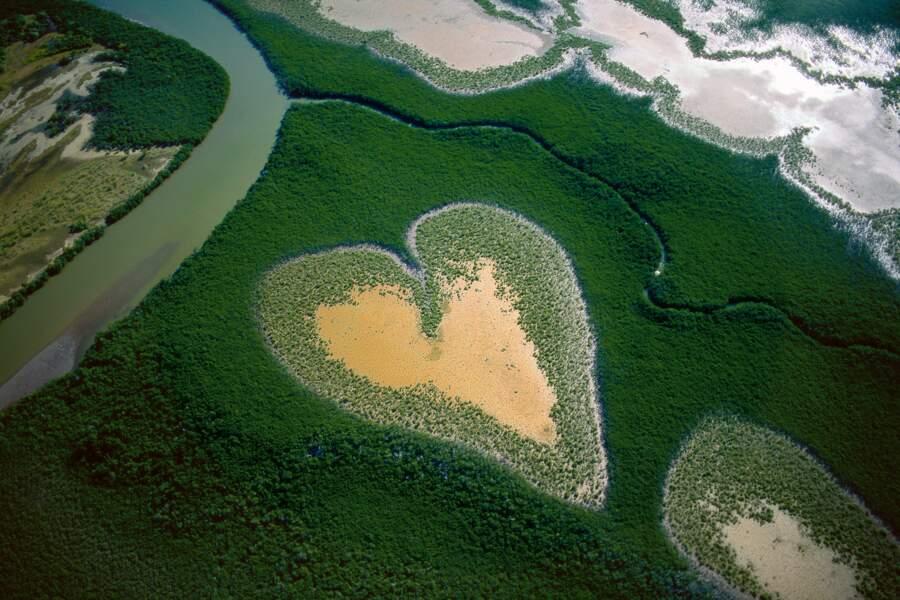 Cœur de Voh en 1990, Nouvelle-Calédonie