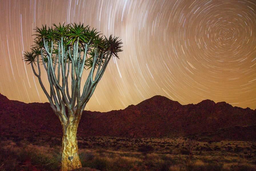 Réserve naturelle de Namibrand, Namibie