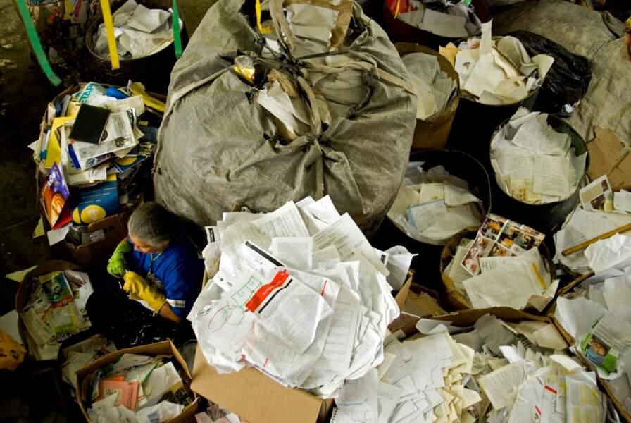 São Paulo et les petites mains du recyclage