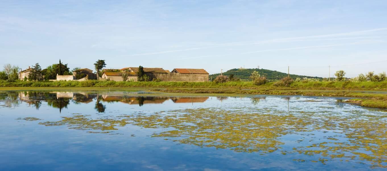 Visiter la réserve naturelle de Bagnas