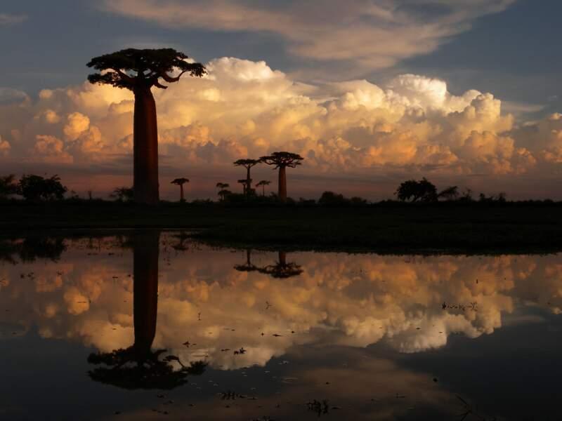 Explorer la grande île de Madagascar