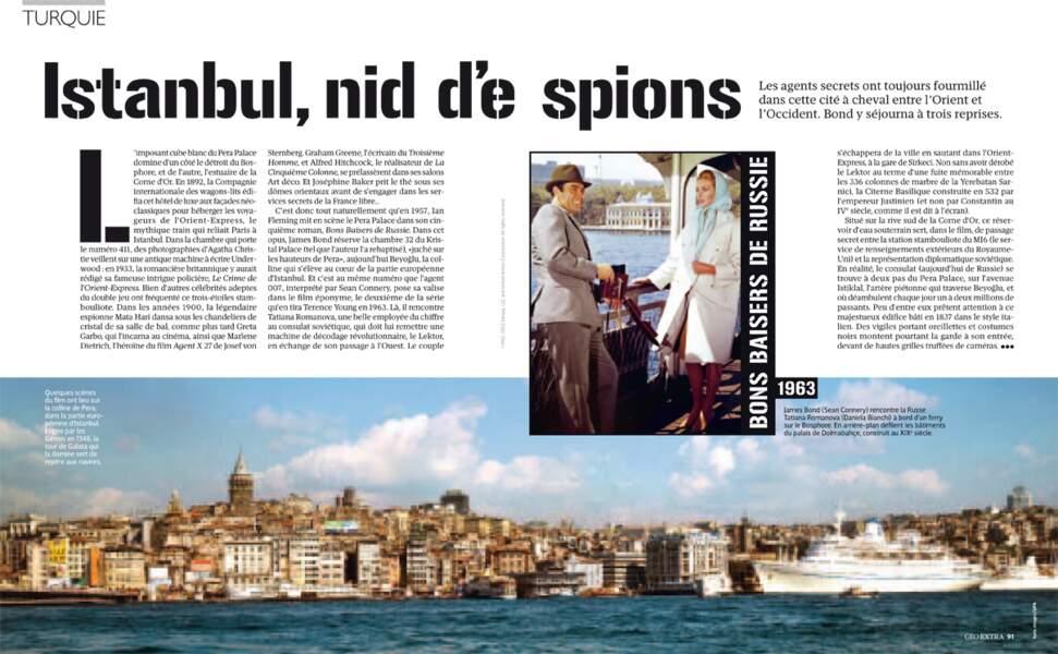 TURQUIE - Istanbul, nid d'espuis