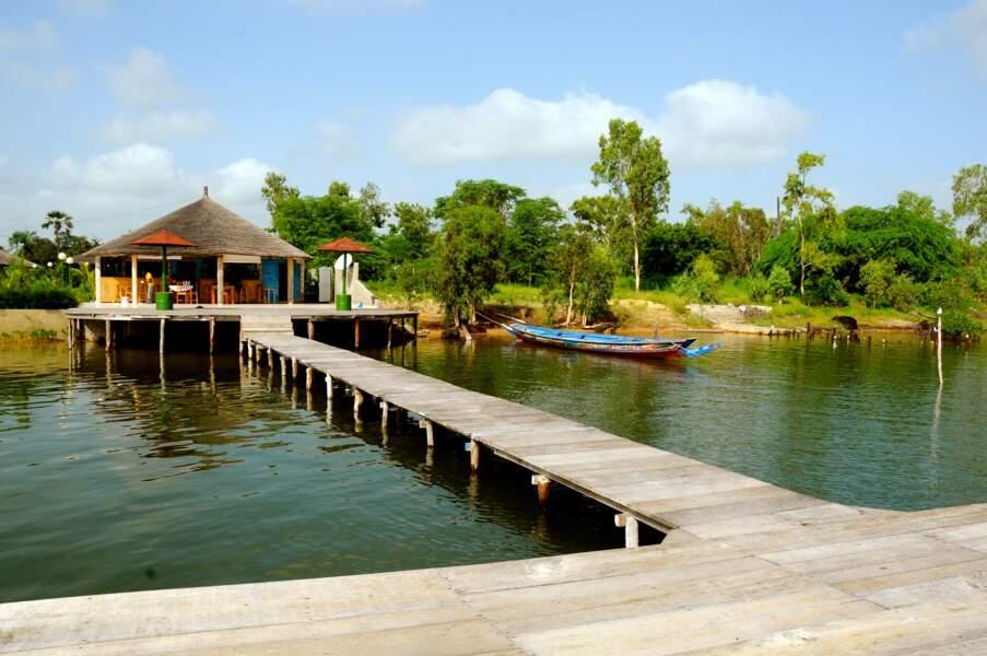 Baie du Sine Saloum, Sénégal