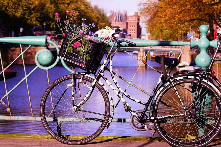 L'immanquable balade à vélo