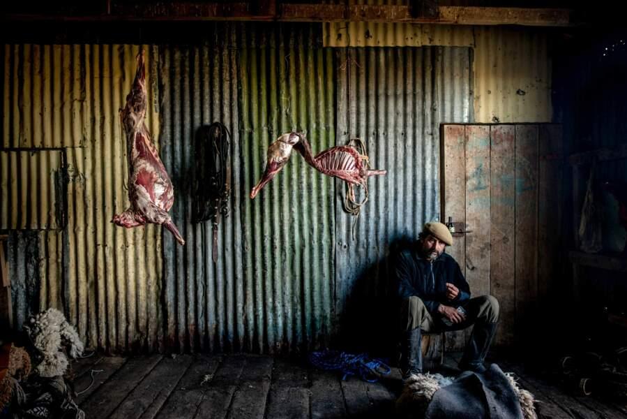 Mouton à tous les repas