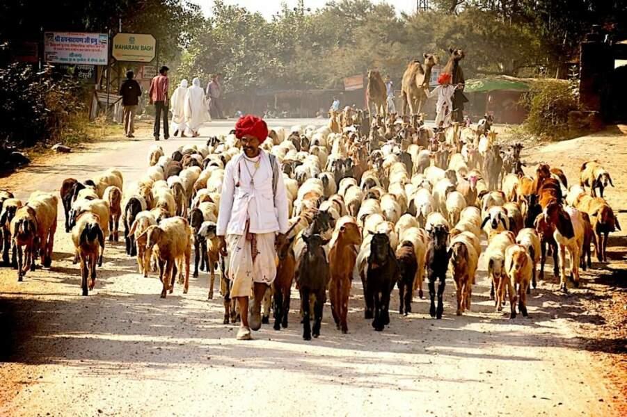 Photo prise en Inde, par mofiman