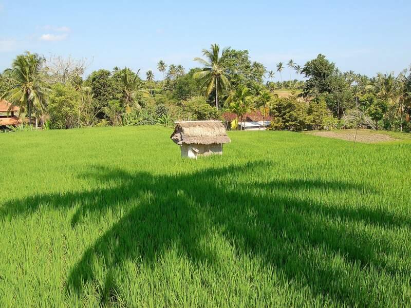 Diaporama n°3 : Bali, l'île de paradis