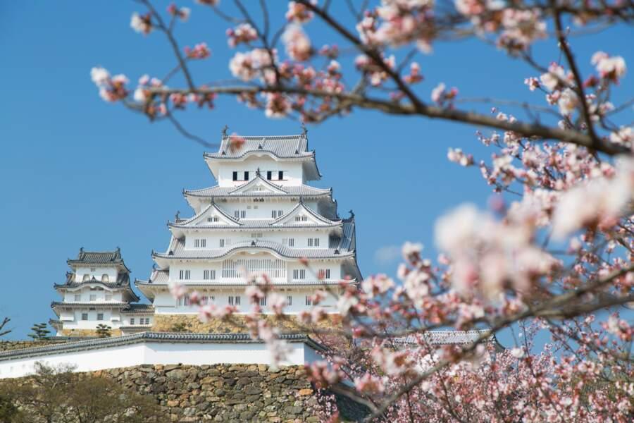 Japon - À l'école des ninjas, espions du Soleil-Levant